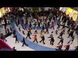 Flash Mob 31.10.2009, г. Москва, ТЦ Метрополис, м. Войковское. 16.00