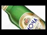 Что мы пьем? о вреде пива